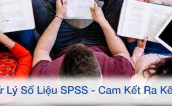 Dịch vụ xử lý số liệu trên spss tại đà nẵng